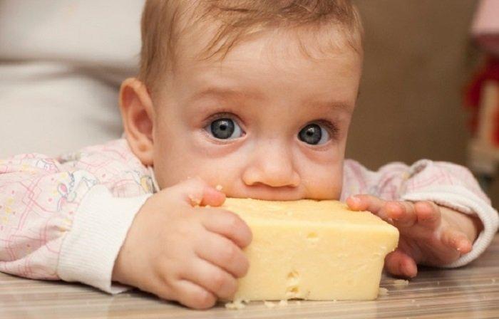 bé mấy tháng ăn được phomai